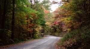 Take A Drive Down One Of West Virginia's Oldest Roads For A Picture Perfect Day