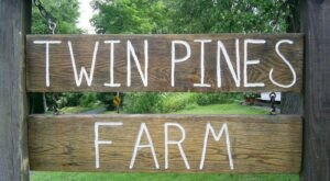 Bring Your Family Out To Twin Pines Farm In Connecticut To Explore A Working Farm And Get Back To Basics
