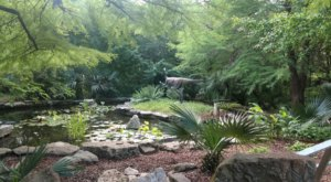 Zilker Botanical Garden Is A Lush, 28-Acre Oasis In The Heart Of Texas' Capital City