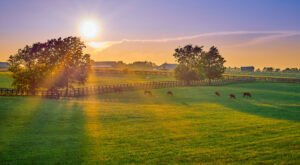 Kentucky Has Officially Been Named The Kindest State In The U.S.