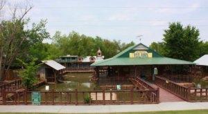 Gator Country Alligator Farm In Louisiana Makes For A Fun Family Day Trip