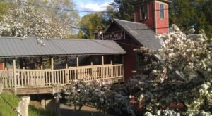 Housed In An 1842 Historic Gristmill, The Montague Bookmill Is A Cozy Used Book Store In Massachusetts