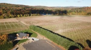 Massachusetts' Four Star Farms Brewery Grows Its Beer Ingredients On Site