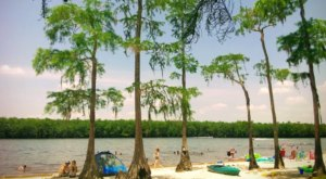 Grab Some Barbecue And Rent A Kayak At This Awesome Spot In Mississippi