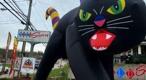 Celebrate Halloween All Year Long At I Scream Sundae, A Horror-Themed Ice Cream Shop In West Virginia
