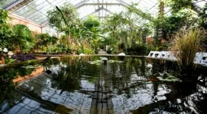 The Unique, Out-Of-The-Way Botanical Gardens And Arboretum Near Detroit That's Always Worth A Visit
