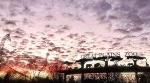 A Family Campout At The Great Plains Zoo In South Dakota Is One Of The Best Things You Will Do This Summer