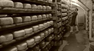 Few People Know There Are Thousands Of Pounds Of Cheese Hiding In Tunnels Under The Streets Of New York City