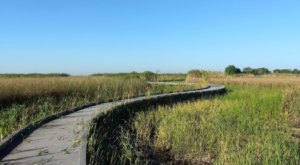 Hop In Your Car And Take Creole Nature Trail For An Incredible 180-Mile Scenic Drive In Louisiana