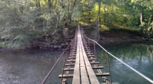 Journey Over A Swinging Bridge And Past A Ghost Town On The Clarion-Little Toby Trail In Pennsylvania