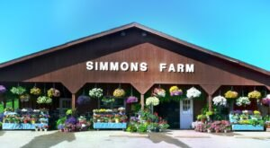The Festive Farm Close To Pittsburgh Where You Can Cut Your Own Flowers