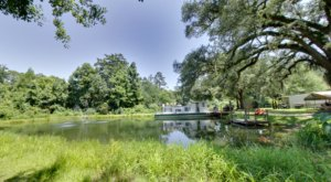 Sneak Away To A Peaceful Paradise Renting A Cabin From Berry Creek Cabins Near New Orleans
