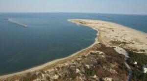 For Just $100 A Night, You Can Stay In A Beachside Cabin At Cape Henlopen State Park In Delaware