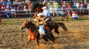 Get A Taste Of The Wild West In New York At The Gerry Rodeo, The Oldest Rodeo East Of The Missippi