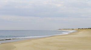 Discover A Pristine Paradise When You Visit Delaware's Bethany Beach
