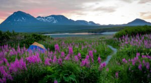 Kachemak Bay State Park Is The Single Best State Park In Alaska And It's Just Waiting To Be Explored