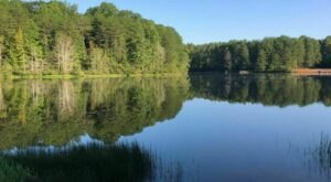 The Hike To North Carolina's Pretty Little Shorts Lake Is Short And Sweet
