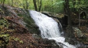 Ken Weber Conservation Trail In Rhode Island Leads To A 12 Foot Waterfall With Unparalleled Views
