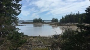 The 2.5-Mile Frank E. Woodworth Preserve Loop Leads Through Woodlands And Along The Maine Coast