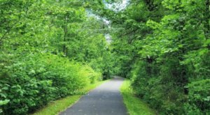 Lenape Trail Is A 2-And-A-Half Mile Hike In New Jersey That's Accessible For People Of All Ages