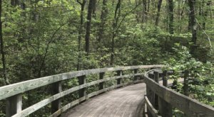 5 Totally Kid-Friendly Hikes In Virginia That Are 1 Mile And Under