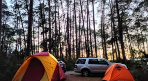 Stephen C Foster State Park Has A One-Of-A-Kind Campground In Georgia That You Must Visit Before Summer Ends