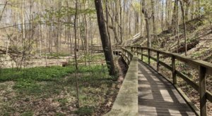 Hudsonville Nature Center Is An Outdoor Gem Hiding Right Off The Highway In Michigan