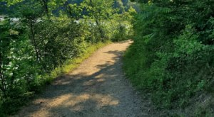 An Easy 3-Mile Loop In Ohio, Hinckley Lake Is One That Should Be Hiked Every Summer
