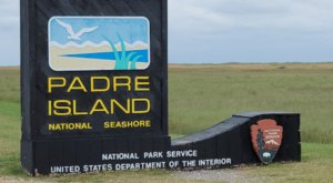 Discover A Pristine Paradise When You Visit Texas's Padre Island National Seashore