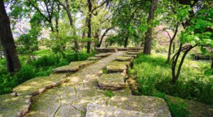 Enjoy The Beauty, Peace, And Quiet Of The Alfred Caldwell Lily Pool In Illinois