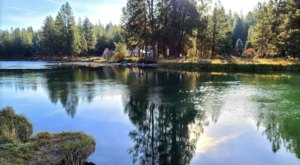 Enjoy A Picture-Perfect Day In Oregon Nature At Meadow Day Use Area