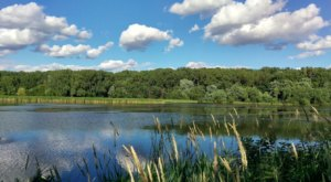 Explore Marsh And Prairie At Wood Lake Nature Center, A Small But Beautiful Wildlife Preserve In Minnesota