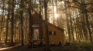 Spend The Night At This Incredible Treehouse Cabin In New York