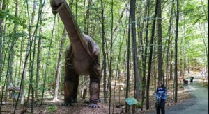 There's A Dinosaur-Themed Park In New York Called Dino Roar Valley