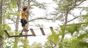 7 Amazing Treetop Adventures You Can Only Have In New Jersey