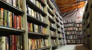 This Single-Story Behemoth Of A Bookstore In Delaware, The Dollar Book Shuffle, Is Like Something From A Dream
