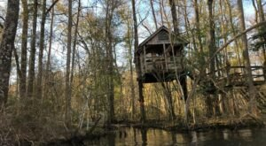For Just $160 A Night, You Can Stay In A Treehouse On The Edisto River In South Carolina