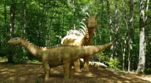 There's A Dinosaur-Themed Playground And Splash Pad In Connecticut Called The Dinosaur Place