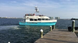 Take In Views Of Alabama's Captivating Coastline While Aboard This Unforgettable Dolphin Cruise