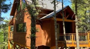 Unleash Your Inner Child And Book A Stay At This Luxurious Treehouse In New Mexico