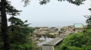 Ship Harbor Trail Is A Boardwalk Hike In Maine That Leads To A Rocky Beach