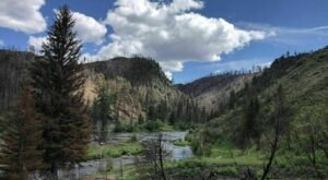An Easy But Gorgeous Hike, Platte River Trail Leads To A Little-Known River In Wyoming