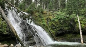 Cool Off This Summer With A Visit To These 5 Montana Waterfalls