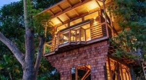 Sleep Among Tropical Foliage At This Luxury Tree House In Hawaii