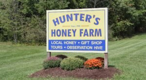 Live Your Sweetest Life At This Awe-Invoking Indiana Honey Farm