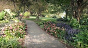 Walk Through This 37.5-Acre Garden And 1,500 Varieties Of Flowers For The Most Beautiful Day Trip In Kansas