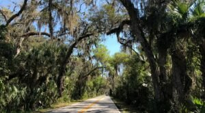 The Ormond Scenic Loop & Trail In Florida Takes You From The Bay To The Beach And Back