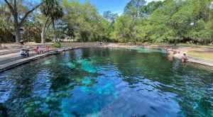Juniper Springs In Florida Is Spring-Fed Fun For The Whole Family