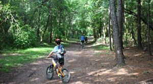 Alabama's Red Mountain Park Offers 15 Miles Of Hiking And Biking Trails That'll Lead You On An Adventure Like No Other