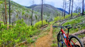 You Will Never Run Out Of Trails To Explore At Reynolds Park In Colorado